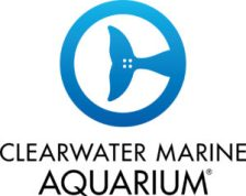 Clearwater Marine AquariumClearwater Marine Aquarium