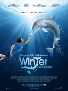 L'affiche du film Winter le dauphin