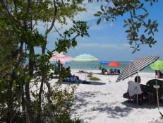 Visiter St Petersburg en Floride : notre guide complet). Ici : Fort DeSoto, St Petersburg, Floride