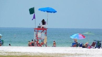Photo of Visiter la baie de Tampa (Clearwater, St Petersburg, Tampa…) Guide de Voyage en Floride