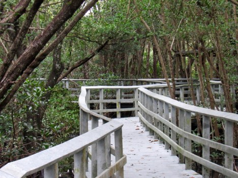 Secret Woods nature Center à Dania Beach