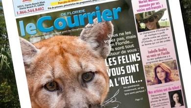 Photo of Le Courrier de Floride de Novembre 2015 est sorti !