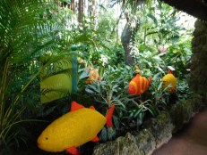 Pinecrest Tropical Garden - Miami - Floride