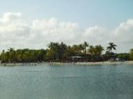 Plage du Matheson Hammock Park à Coral Gables / Miami / Floride