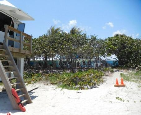 Lazy Loggerhead Cafe - Plage de Carlin Park à Jupiter / Floride