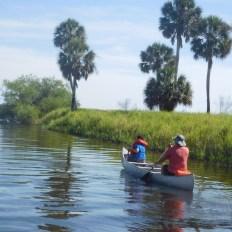 Kayak au Myakka River State Park / Sarasota / Floride