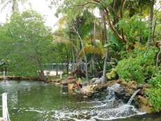 Theater of the Sea / Islamorada / Floride