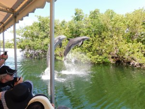 Theater of the Sea / Islamorada / Floride