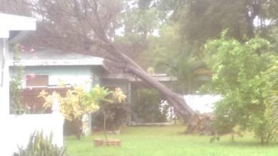 Photo of L'ouragan Hermine a frappé la Floride et il faiblit en entrant sur la Géorgie