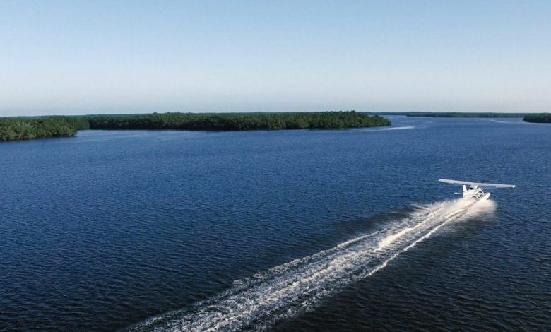 Les 10 000 Islands des Everglades (Floride)
