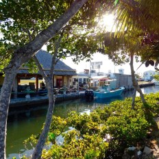 Les Lower Keys : Le Backcountry de Key West