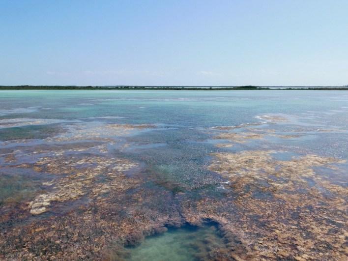 Les Lower Keys : Le Backcountry de Key West