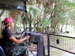 Billie Swamp Safari, dans les Everglades de Floride (réserve Miccosukee de la forêt Big Cypress)