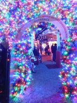 Noël à Delray Beach en Floride