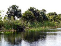 Lake Okeechobee à Moore Haven en Floride