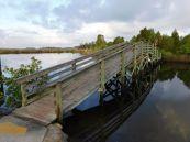 Embouchure de la Weeki Wachee River
