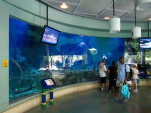 Zoo de Miami