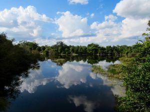 Daggerwing Nature Center à Boca Raton