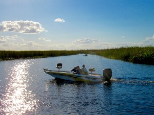 Les Everglades au Loxahatchee National Wildlife Refuge à Boynton Beach en Floride