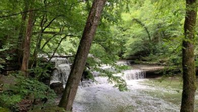 Photo of Old Stone Fort State Park : un très beau parc naturel au sud de Nashville