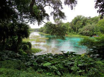 Rainbow Springs State Park, belle source de Floride