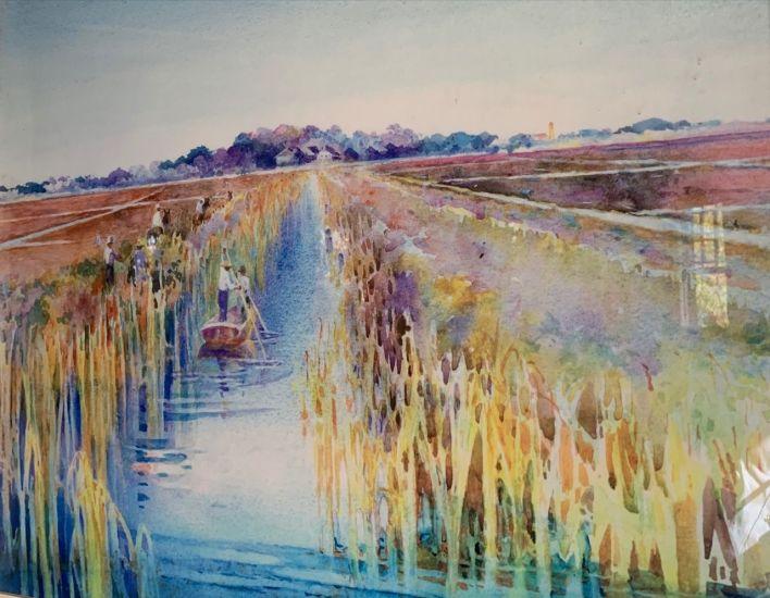 Préparation des champs de riz pour la plantation