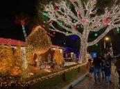 Decorations-de-Noel-Pompano-Beach-en-Floride-5893