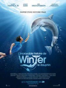 L'affiche du film Winter le dauphin