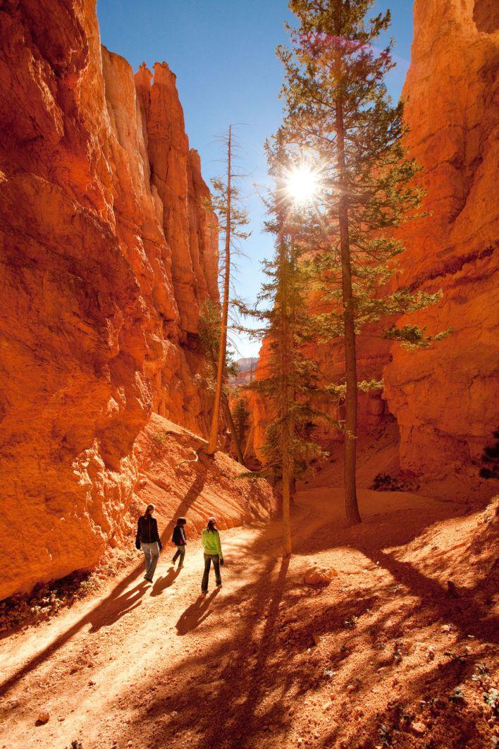 Le Navajo Loop à Bryce Canyon