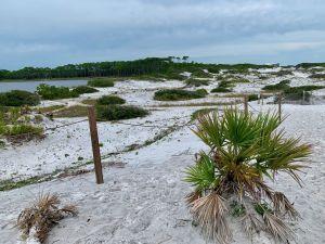 Le Grayton Beach State Park
