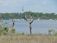 Le Gulf Island National Seashore à Perdido Key en Floride