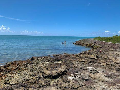Le site de snorkeling d'Indian Key, dans l'archipel des Keys de Floride