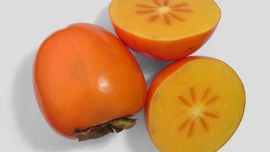 Photo de La plaquemine : un délicieux fruit automnal américain (ici appelé persimmon)