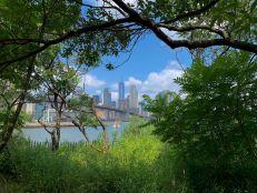 Manhattan vu depuis le quartier de Dumbo, à Brooklyn (notre guide de New-York)