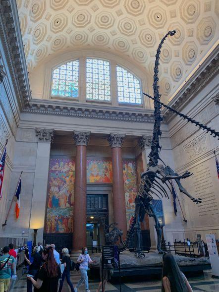 Hall d'entrée du Musée d'histoire naturelle de New-York (American Museum of Natural History)