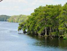 En bateau à roues sur la majestueuse St Johns River, au nord d'Orlando en Floride