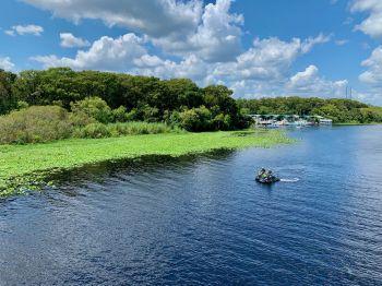 St-Johns-River-croisiere-bateau-a-roue-Floride-0472