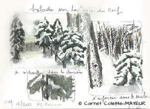Colette MAYEUR Randonnée hivernale (Visioateliers)