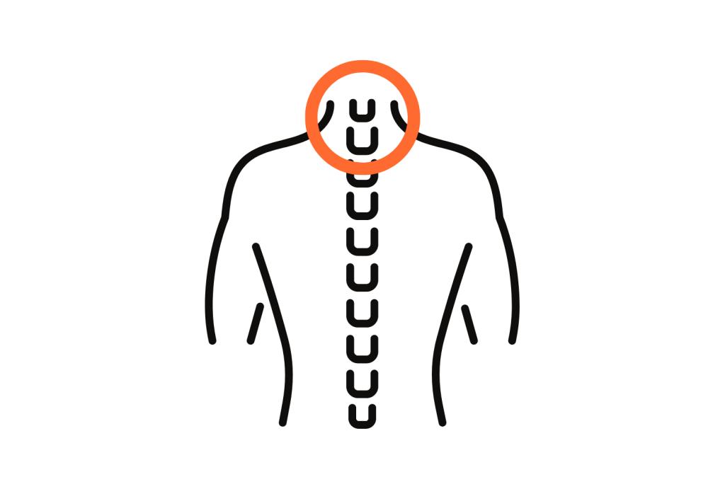 stretchingpro-programme-hercule-etirements-musculation-flexibilite-souplesse-mobilite-decompression-vertebres-cervicales-colonne-vertebrale