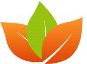 Course Kitchen Logo