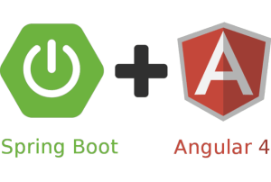 https://www.udemy.com/course/full-stack-angular-spring-boot-tutorial/