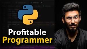 Clever Programmer - The Profitable Programmer