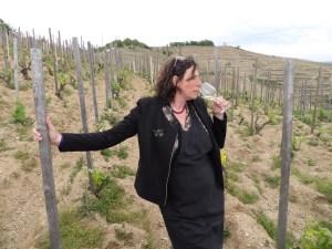 Les ateliers de découverte du vin