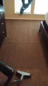 Nothing Like A Fresh Carpet