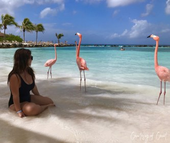 Flamingo Beach _Courtesy of Court1