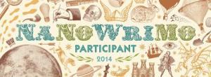 nanowrimo FB cover