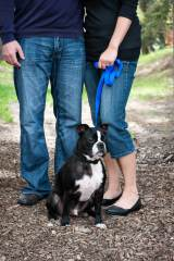 Regina Engagement Photographer - Adam & Vicki - Engagement with Dog