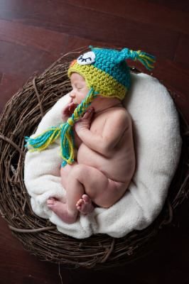 Regina Family Photographer - Jace Newborn - Favel Family - Owl Nest Above