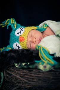 Regina Family Photographer - Jace Newborn - Favel Family - Owl Nest