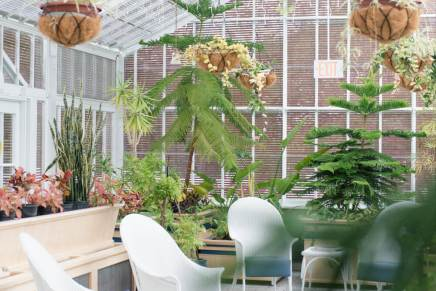 Regina Family Photographer - Government House - Conservatory